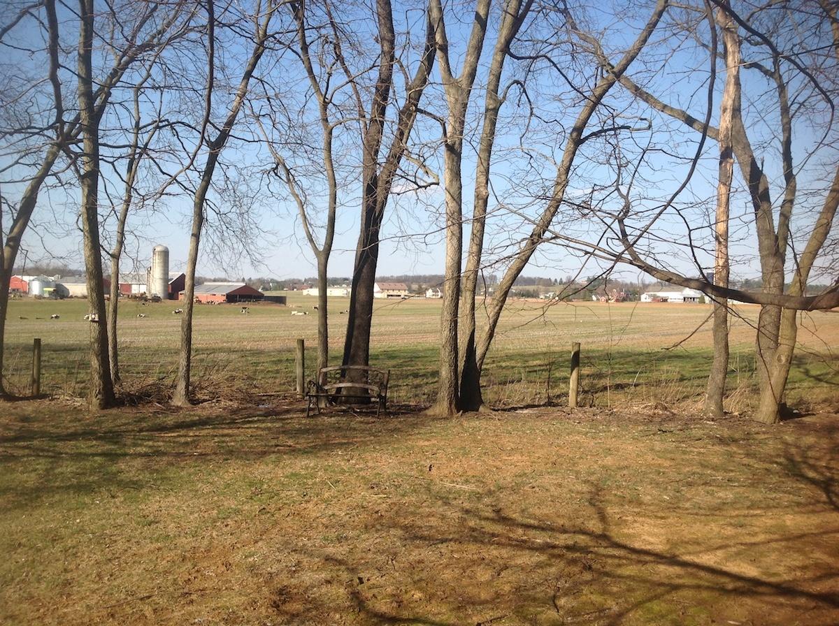 Lititz, PA case study landscape view before