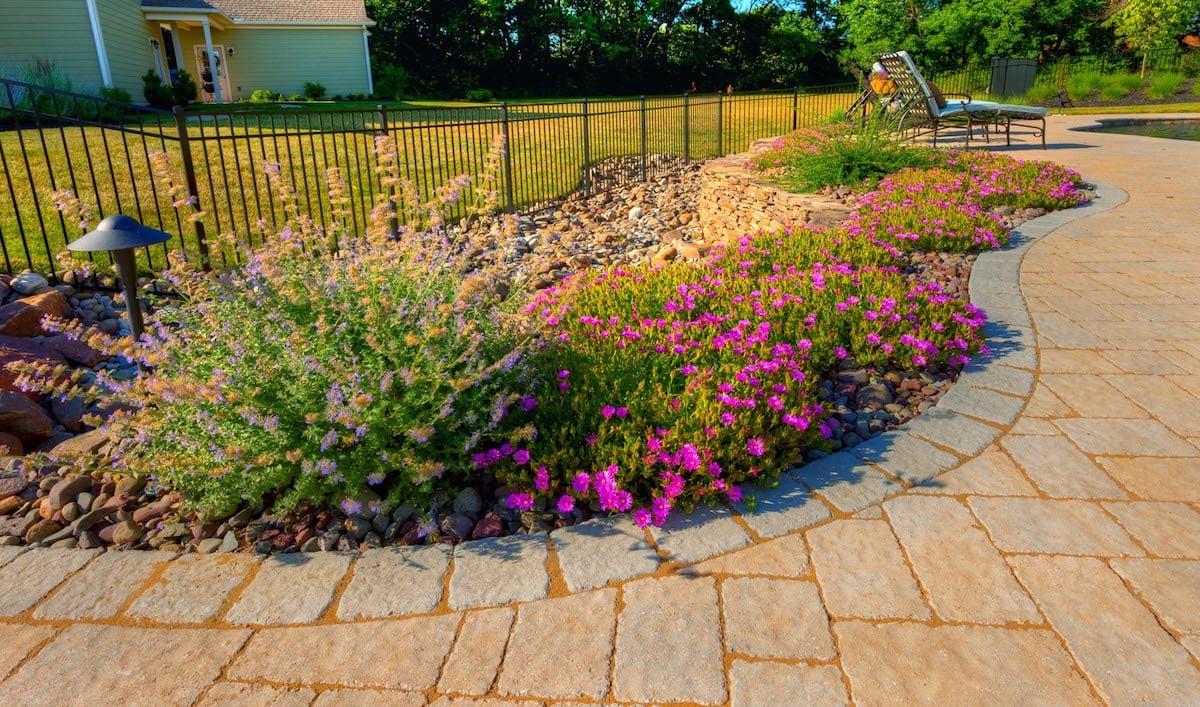 Seasonal flower planting on pool patio