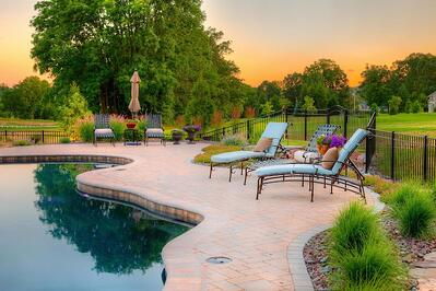 best trees and shrubs near pools