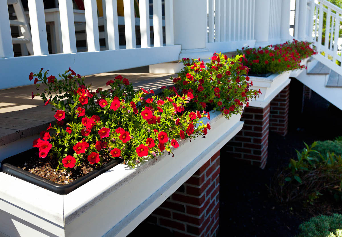 Planter boxes on porch