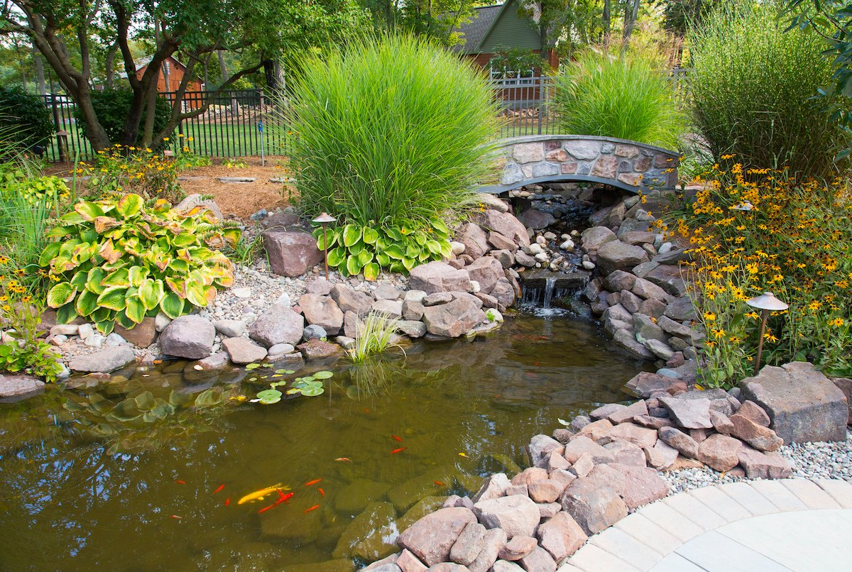 Professionally landscaped fish pond