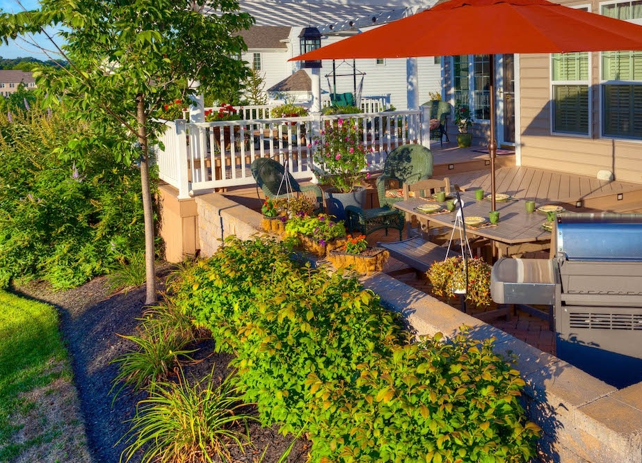 low maintenance plants and shrubs around patio